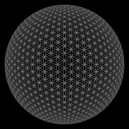 Ball 3D - Fleur de Vie 2 est sorti Banque d'images - 18881593