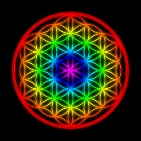 Regenbogen Blume des Lebens Symbol