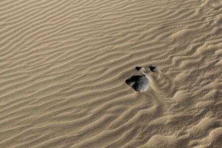 Steine ??im Sand Hintergrund 2 Standard-Bild - 42834428