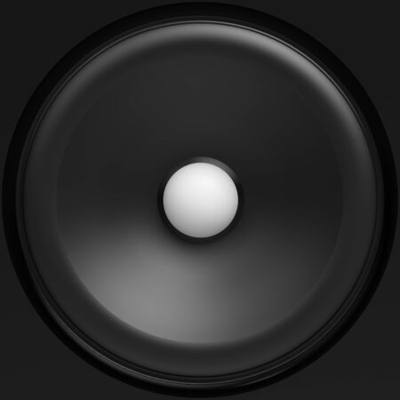 black loudspeaker with white center