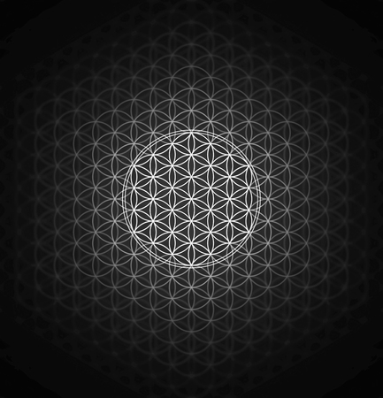 genesis pattern - the flower of life silver