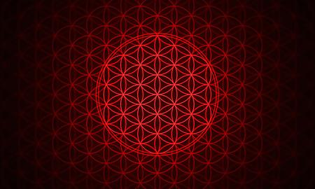 golden ratio: la fleur de la vie - modèle de genèse rouge