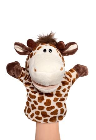 marionetta: Burattino di zebra isolato su bianco, emozione felice