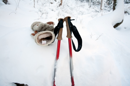 nordic ski: closeup of trekking poles at winter forest Stock Photo