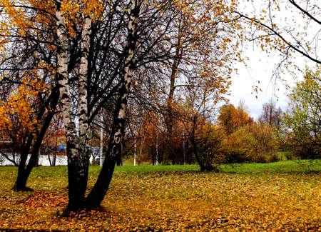 minsk: golden autumn in Minsk