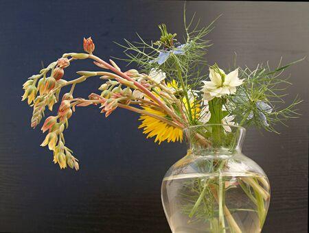 unpretentious: unpretentious bouquet Stock Photo
