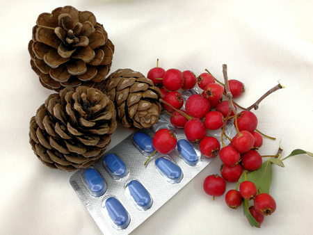 medical christmas cards with berries and pine cones