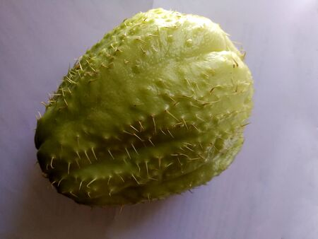 chayote fruit with thorns Stock Photo