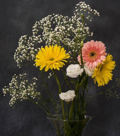 gerbera flower on abstracta background 스톡 콘텐츠