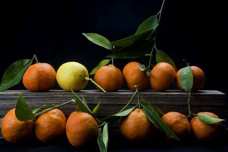 organic tangerines with leaves on black background Reklamní fotografie