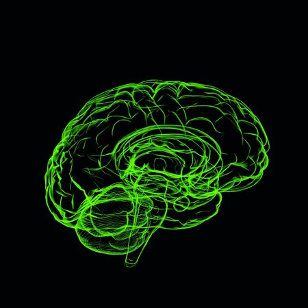 Xray concept green brain