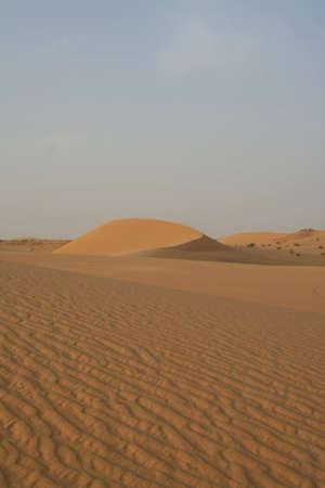 Dune of the Sahara desert in Libya photo
