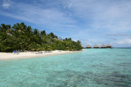 paradise beach of maldives photo