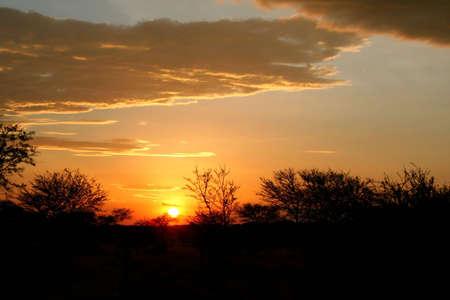 Sunset at serengeti national park, tanzania, africa photo