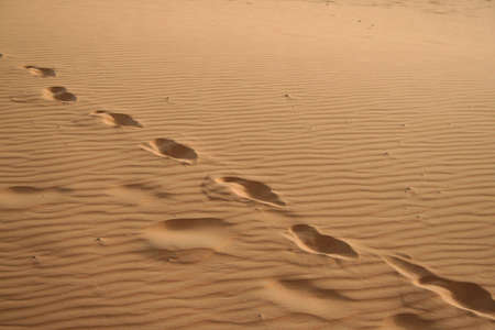 erg: foot prints in Sand dunes of Erg Chebbi in the Sahara Desert, Morocco
