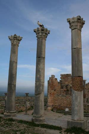 volubilis: Volubilis Roman old city, Morocco, at early morning Stock Photo