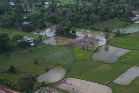 areal view at  cambodian rice fields at early morning photo
