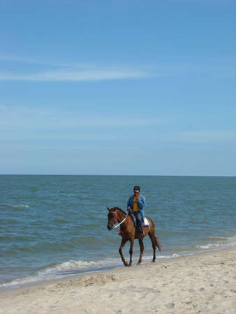 horse riding at paradise beach photo