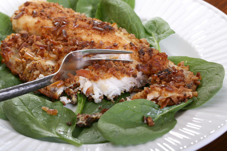 filets: Catfish filets coated with crushed pretzels and roasted Stock Photo