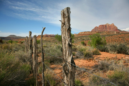 vistas: Country scene out west, utah of fencing with barbed wire, gnarled weathered posts and mountain vistas