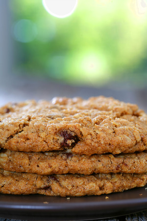 oatmeal cookie: Chocolate chip oatmeal walnut cookies prepared on a plate in home kitchen