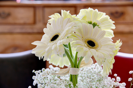 Gerbera daisies in a bunch in bright light