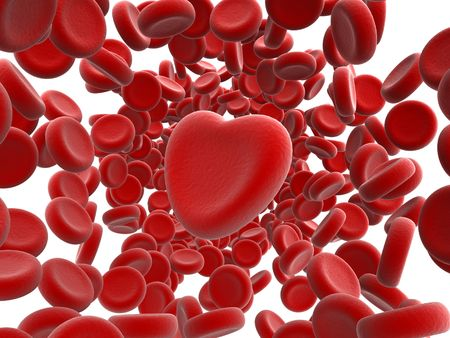 red blood cells and heart Stock Photo - 4999260