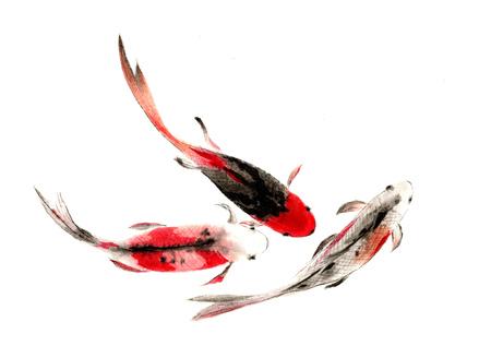 중국 전통 수채화 손으로 잉어 - 행운을 대신하여
