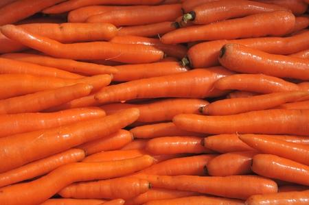 carots: isolated carots