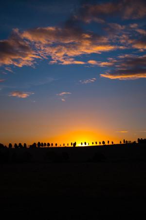 breezy: Sunset At Melbourne