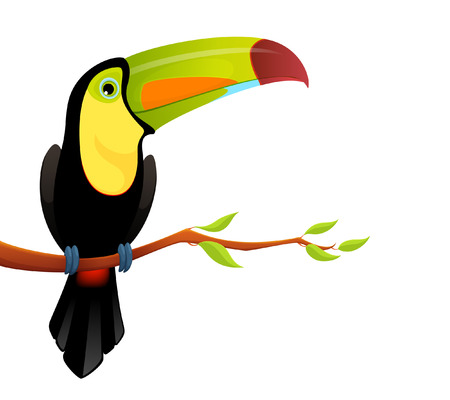 billed: Colorful illustration of a cute keel billed toucan