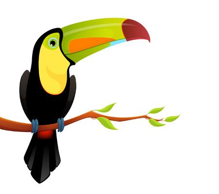 Kleurrijke illustratie van een leuke kiel gefactureerde toekan
