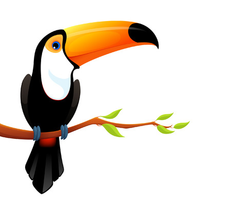 Colorful illustration of a cute toucan Illustration