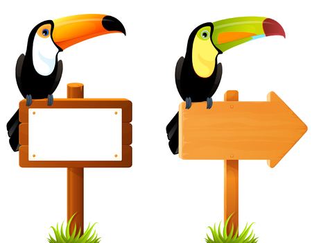 tucan: Colorful toucan birds sitting on wooden sign board