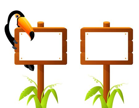 tucan: Cute toucan bird sitting on wooden sign board