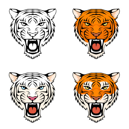 tiger white: line illustration of a roaring tiger head