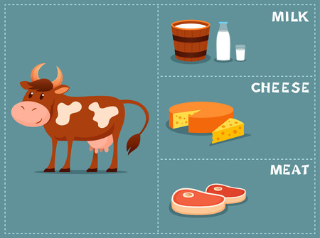 iconography: cartoon illustration of a cow and products we gain from her Illustration