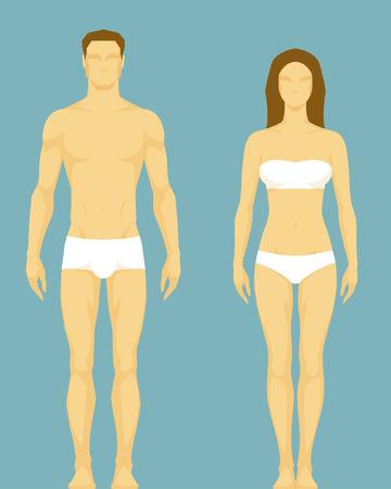 corpo umano: figura stilizzata di un tipo di corpo sano dell'uomo e della donna