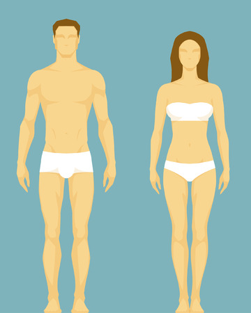 human body parts: stylized illustration of a healthy body type of man and woman