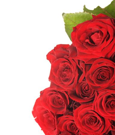 Red Roses Border photo