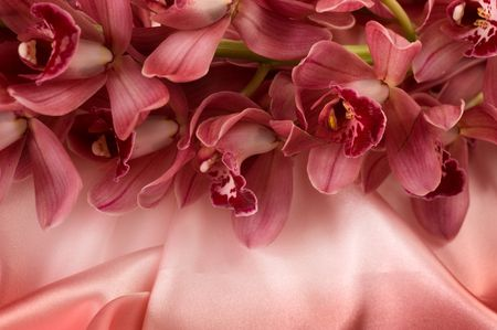 satiny: Orchid and silk Stock Photo