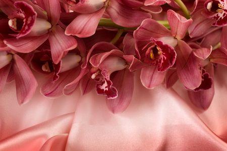 raso: Orchid e seta