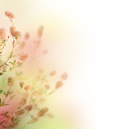 humeur: Beau Pastel Floral Border.Over blanc.