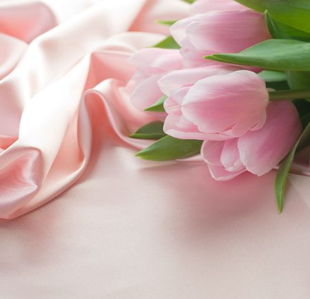 Beautiful Tulips on a Silk.With copy space photo