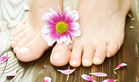 feet relaxing: Beautiful Woman Feet with flower.Spa or pedicure concept