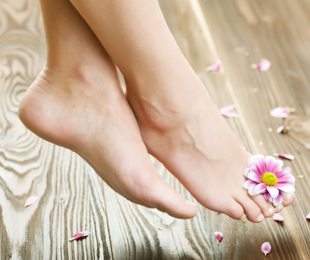 human foot: Beautiful Woman Feet with flower.Spa or pedicure concept