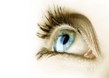 Beautiful Eye over white Stock Photo - 6686289