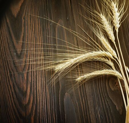 wood agricultural: Wheat Border over wooden background Stock Photo