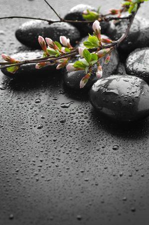 Zen Spa Stones Border Stock Photo - 7802521