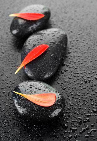 Zen Spa Wet Stones  photo